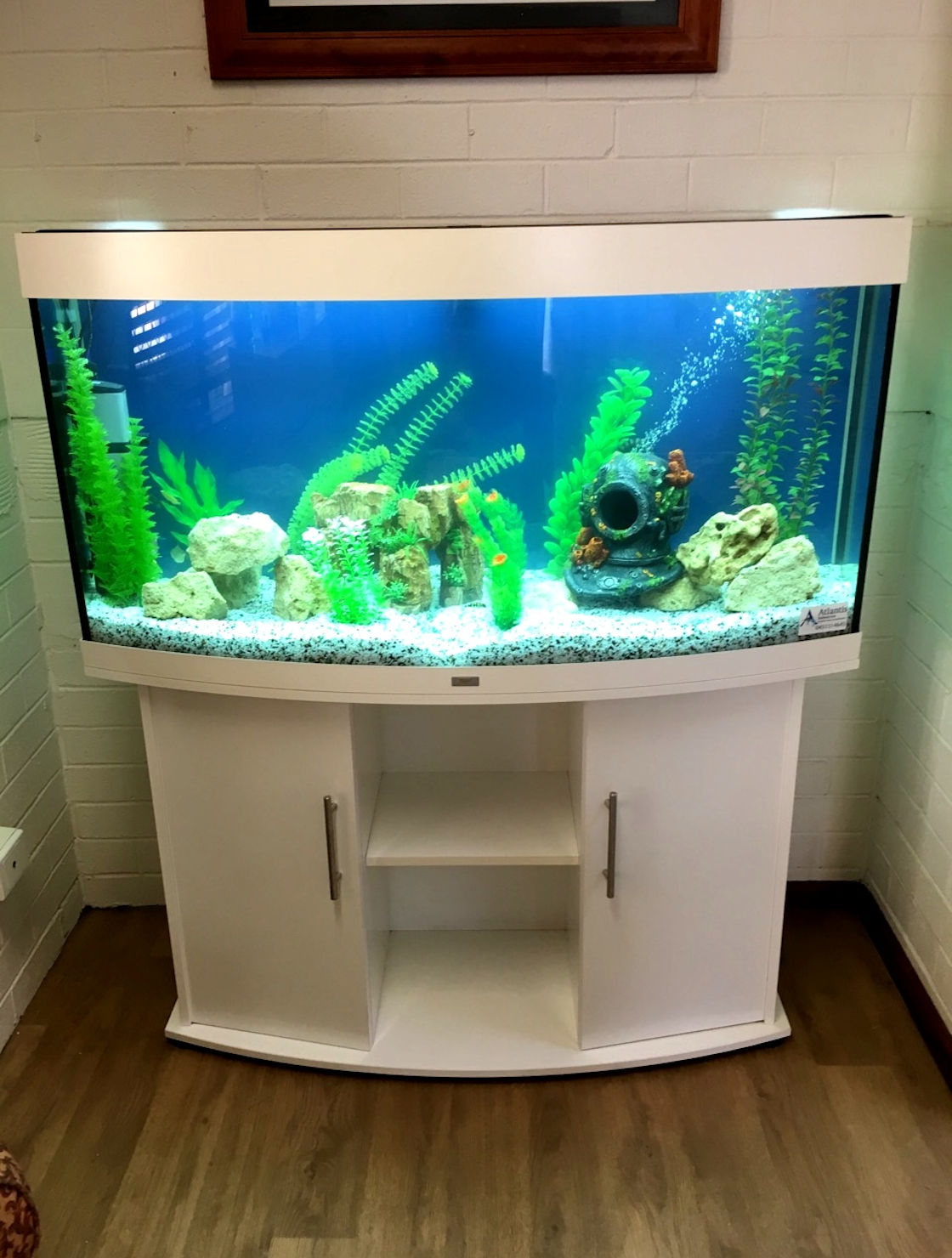 4ft Curved White Aquarium