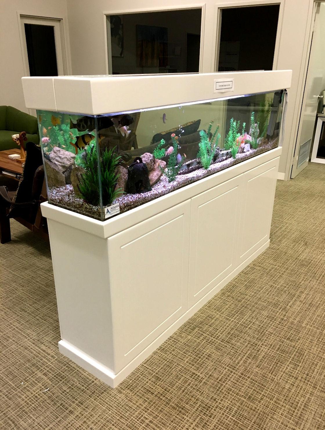 Aquarium Rentals Perth