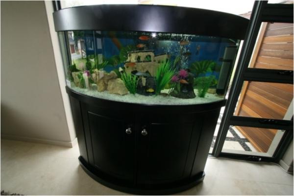 Atlantis Industries Aquarium Hire and Maintenance Perth WA