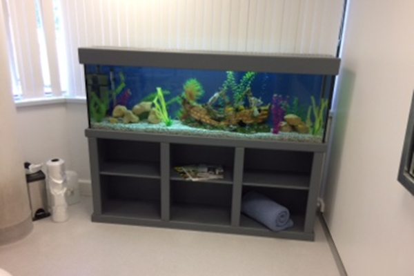 Aquarium Lease Perth